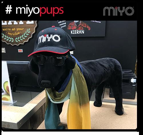 #miyopups